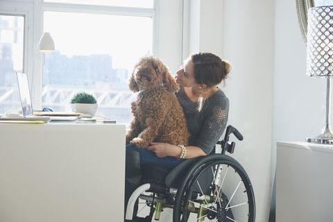 Caucasien, femme, dans, a, fauteuil roulant, à, a, chien, dans, elle, bras