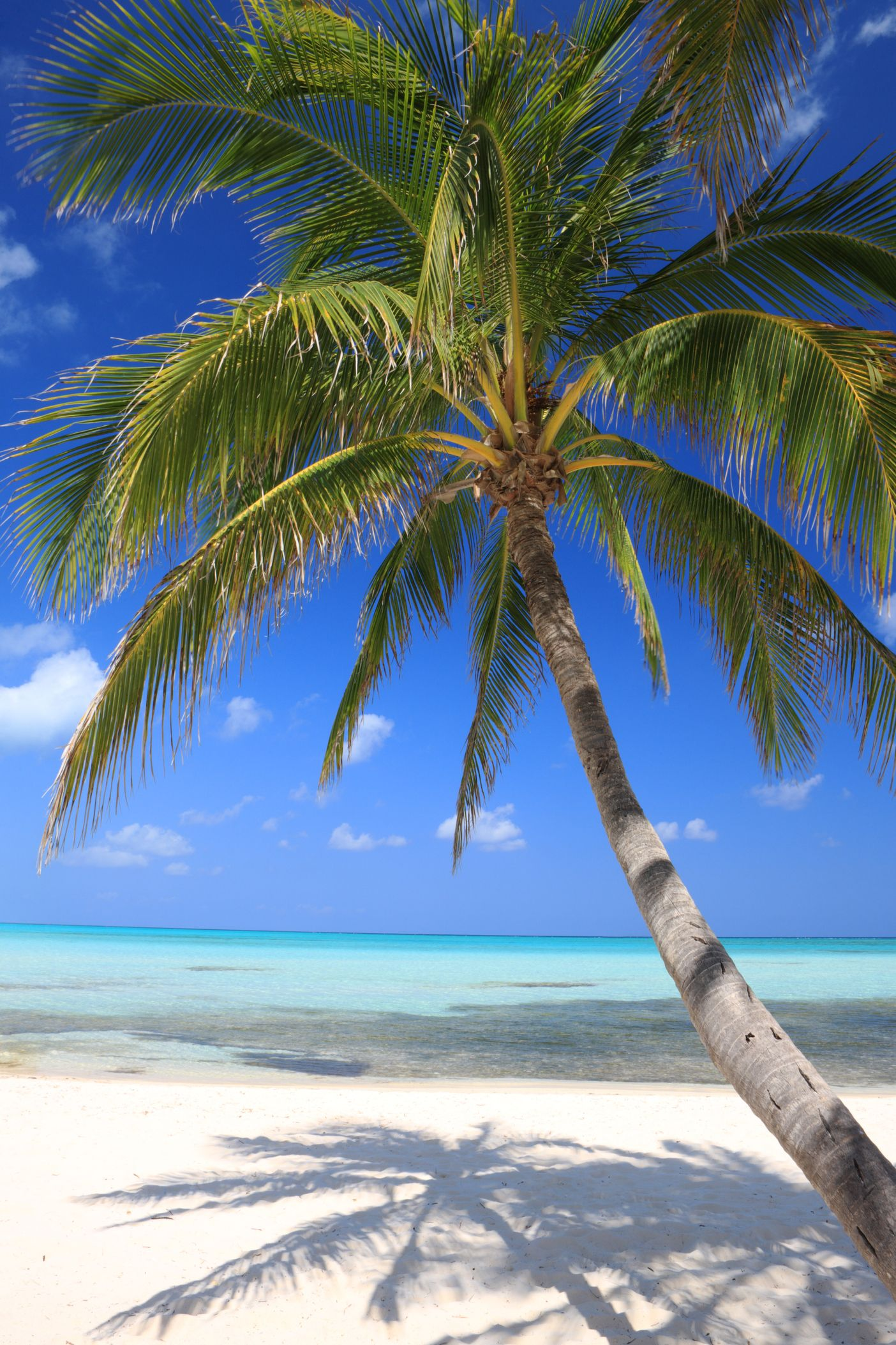 Best Places for Solo Travelers - Cayman Islands