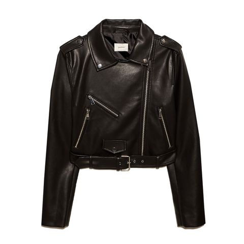 Clothing, Jacket, Leather, Leather jacket, Outerwear, Sleeve, Textile, Zipper, Top,