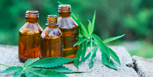 cbd oil for anxiety