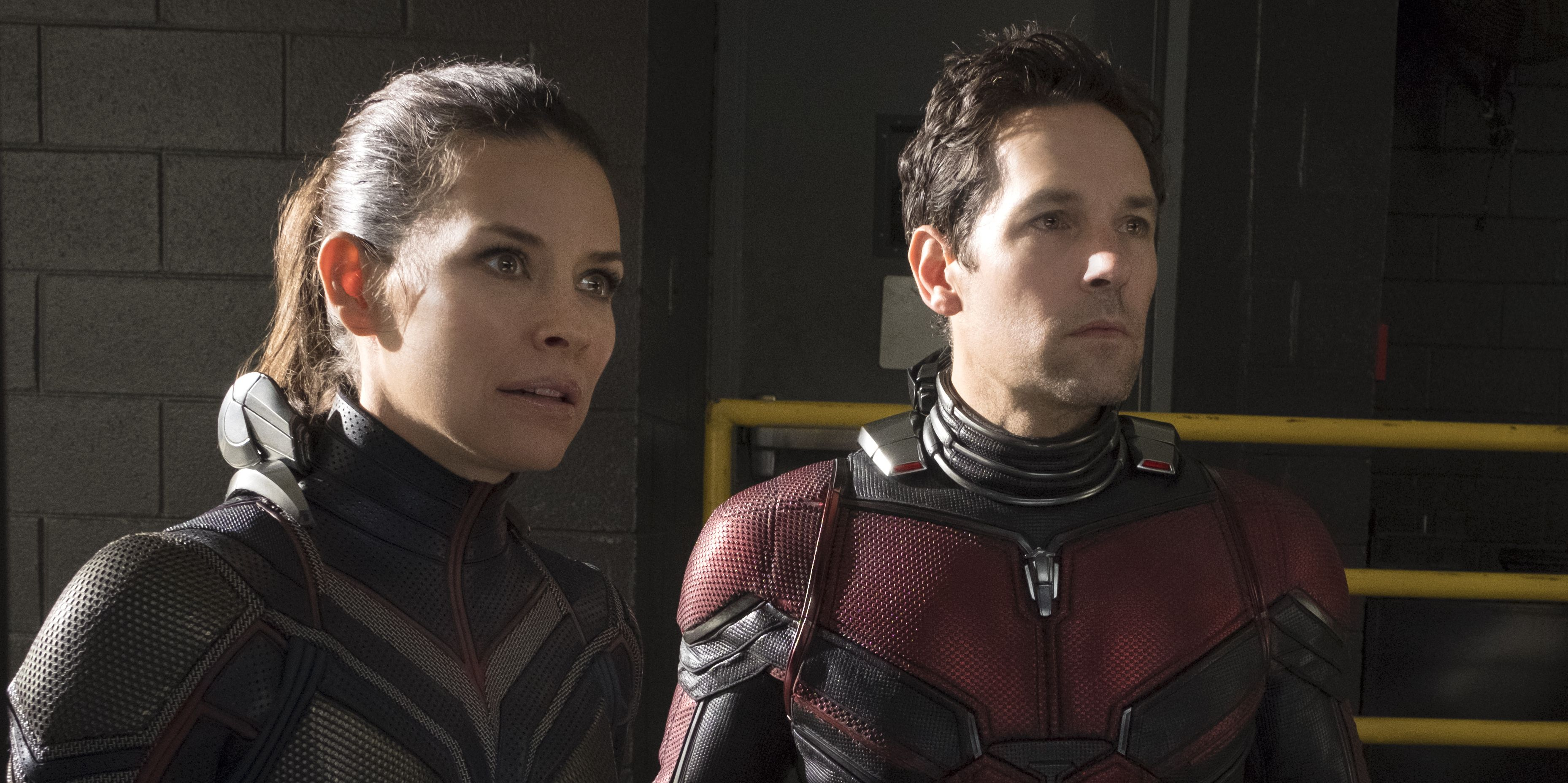If You're a Marvel Completist, Ant-Man and the Wasp Is the Key to Avengers