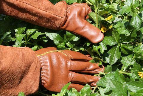 gants de jardinage ccbetter