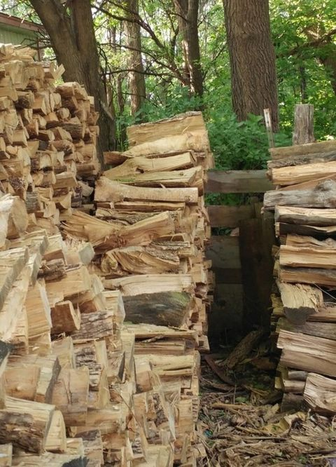 4 Can You Find The Cat In Wood Pile