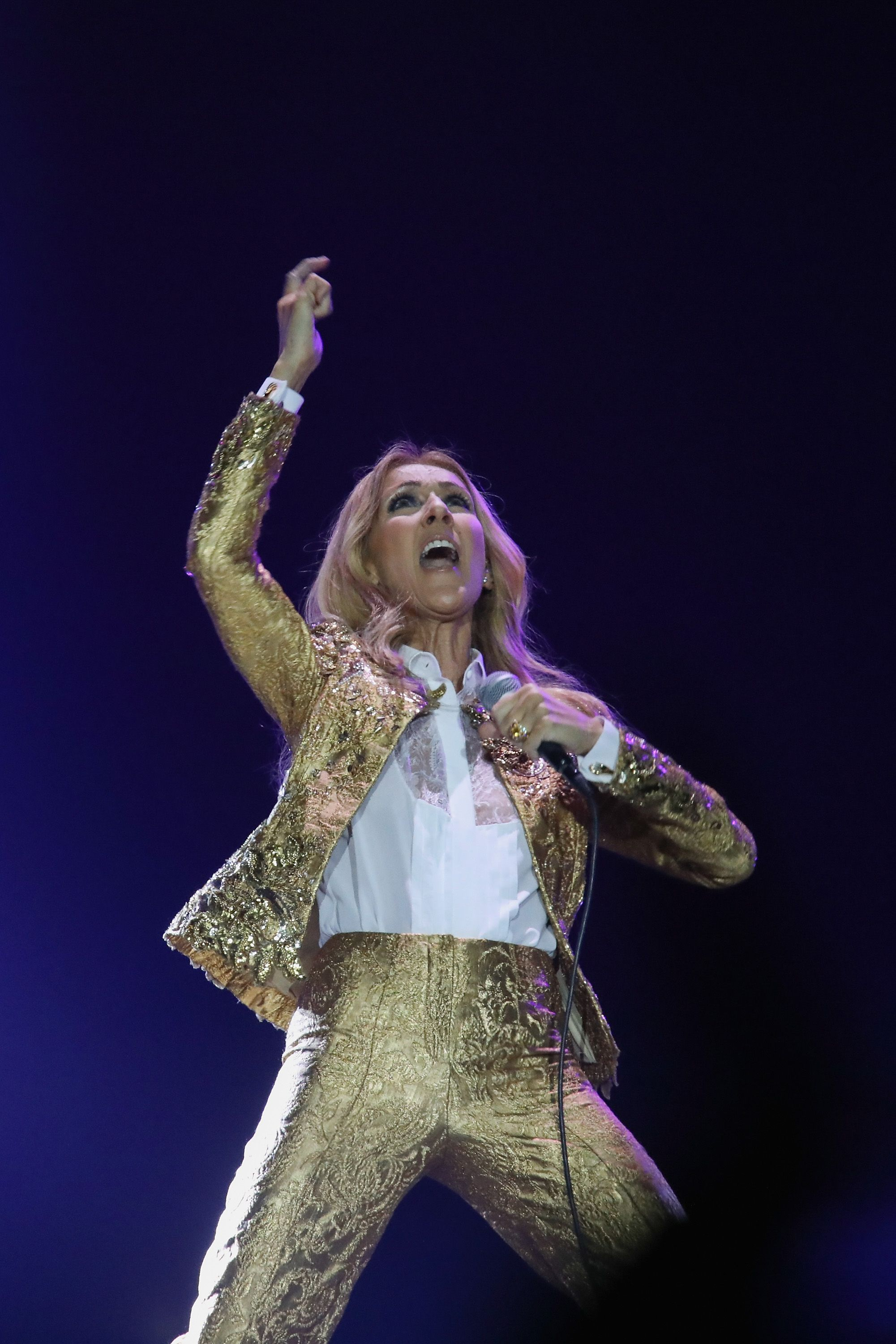 Celine Dion Performs In Auckland