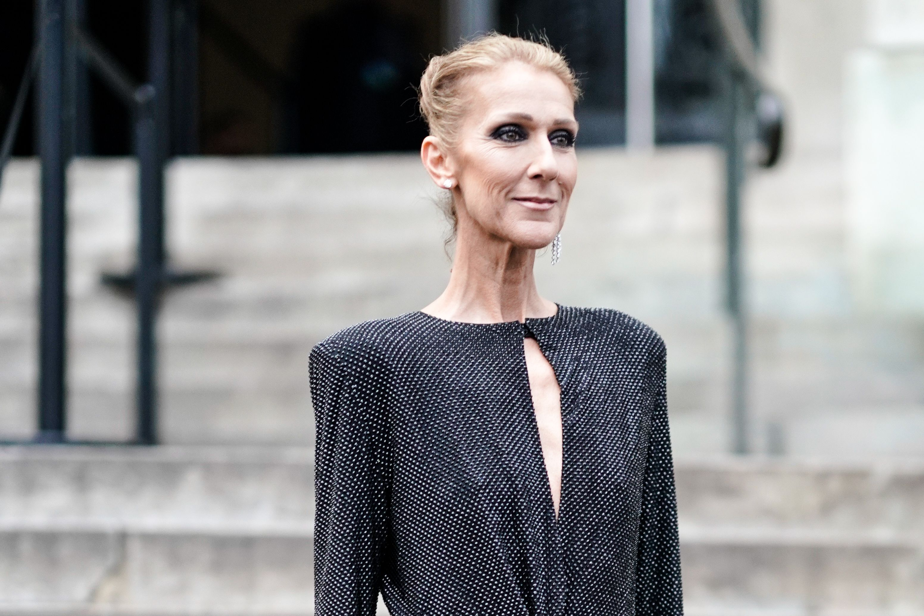 Celine Dion Is Getting Her Own Biopic - 'The Power of Love' Celine Dion  Biopic Details
