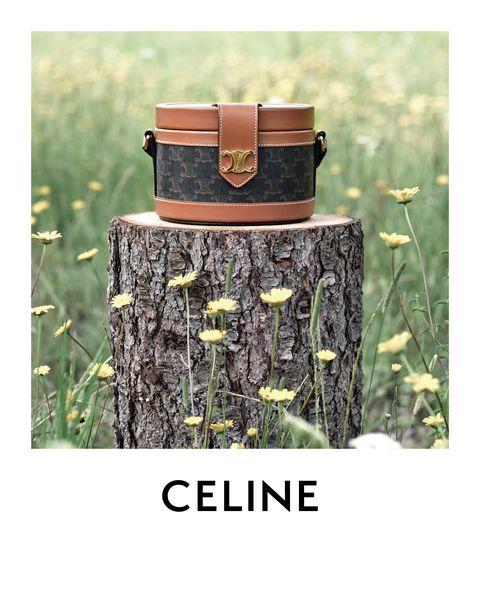 elle 包打聽 blackpink lisa 也愛揹的 celine tambour 圓盒包