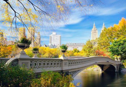 Central Park a New York è un parco unico al mondo