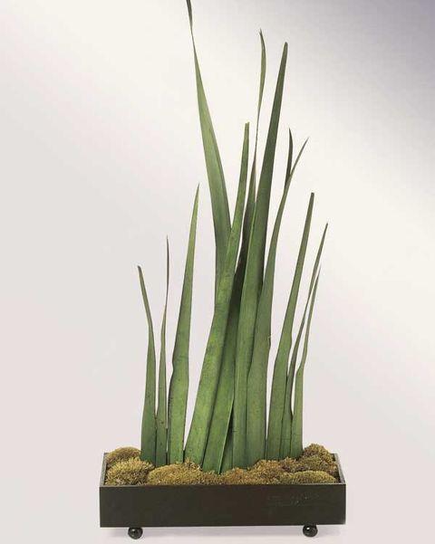 centro de mesa con musgo y hojas de yuca