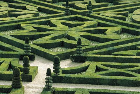 unspecified   circa 2004  france, centre, loire valley, villandry castle, gardens  photo by dea  f carassalede agostini via getty images