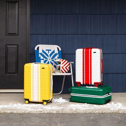 Away ski luggage
