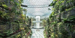 No es un jardín botánico, es el mejor aeropuerto del mundo