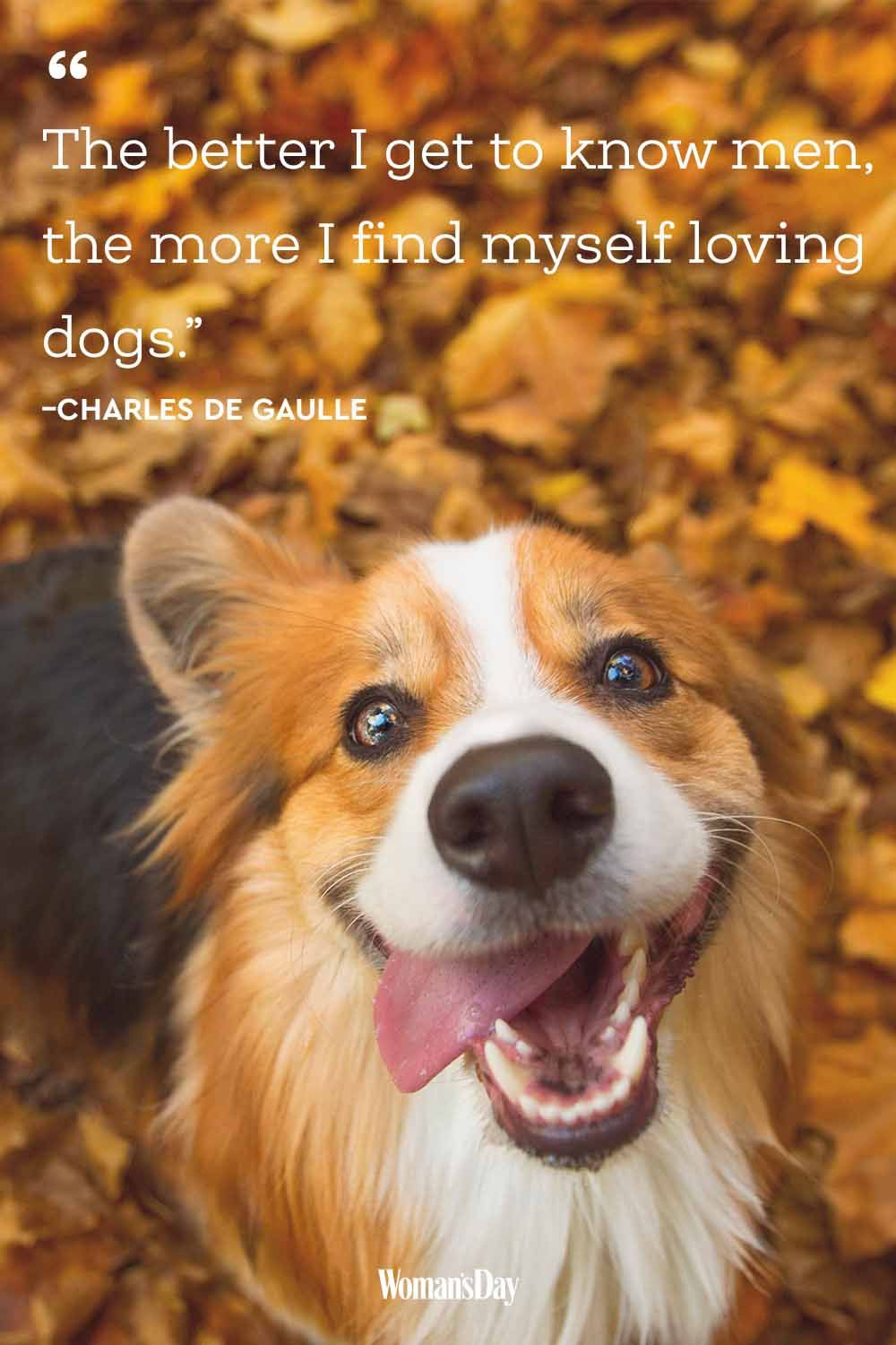 Dog Quotes - Charles de Gaulle
