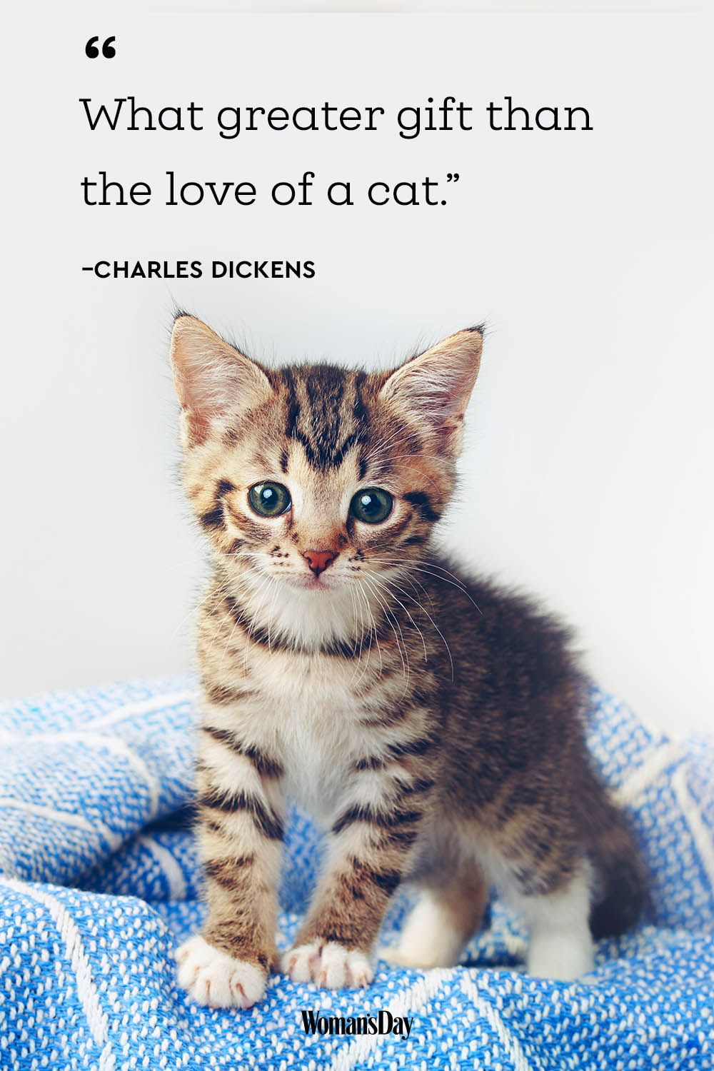 cat quotes - Charles Dickens