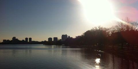 Sunny Charles River