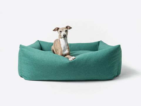 charley chau bliss bolster bed and accessories