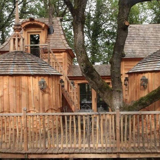 tree house chateau