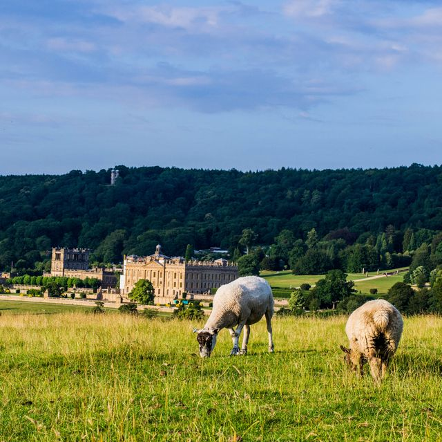Chatsworth house countryside