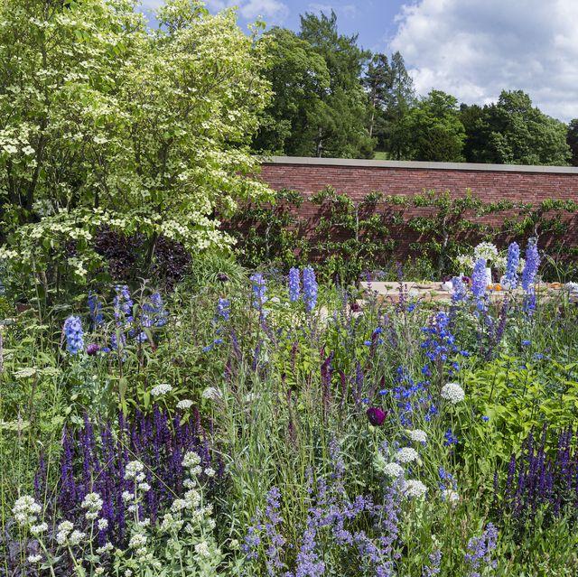 The Wedgwood Garden. Designed by: Jamie Butterworth. Sponsored by: Wedgwood. Show Garden. RHS Chatsworth Flower Show 2019.