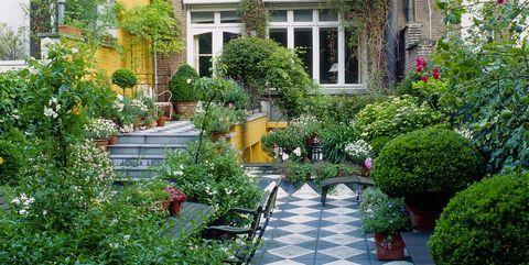 Low Maintenance Garden Design Ideas Tips Tricks And Advice