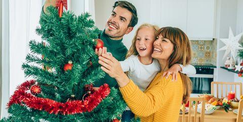 Christmas tree care guide