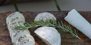 cheese for the picnic in the garden at la bastide de