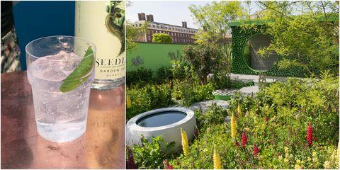 Chelsea Flower Show 2018 - The Seedlip Garden design