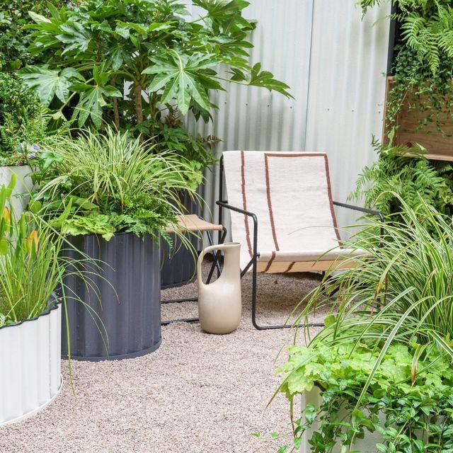 chelsea flower show 2021  the hot tin roof garden