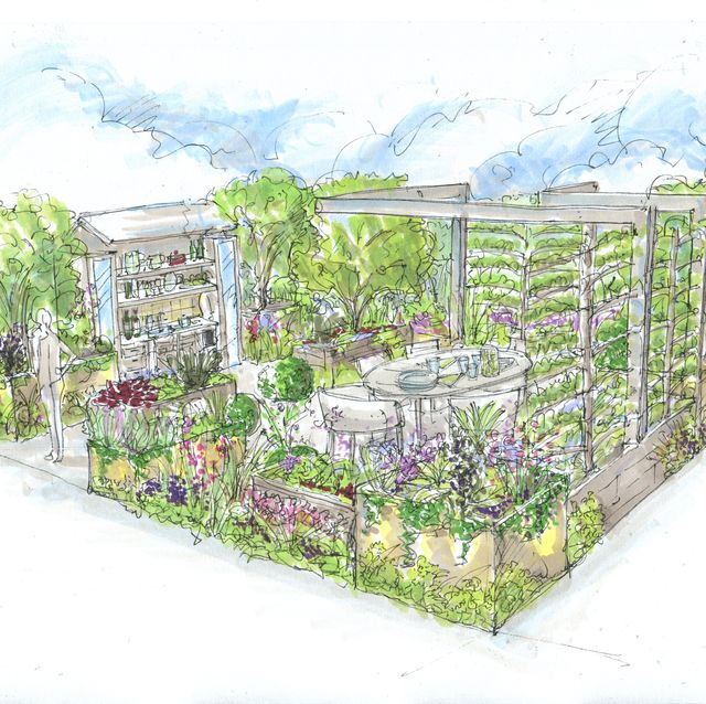 parsley box show garden at the rhs chelsea flower show 2021