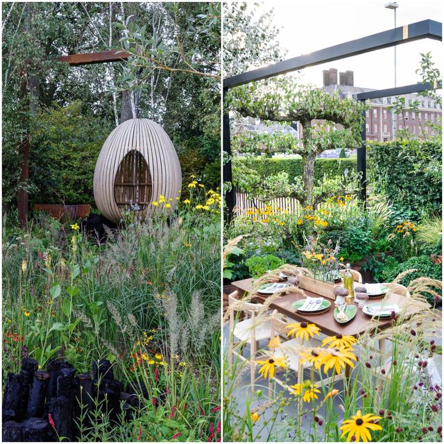 chelsea flower show 2021   people's choice award winners   yeo valley organic garden designed by tom massey, the parsley box sanctuary garden designed by alan williams