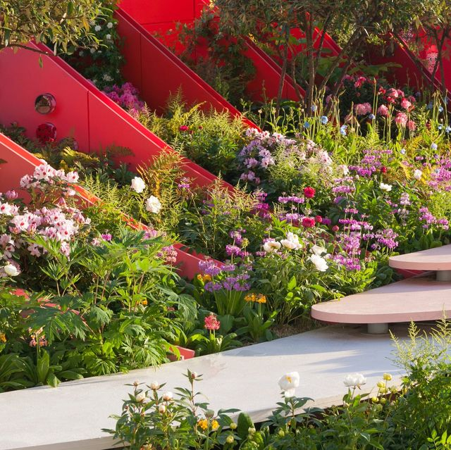 rhs chelsea flower show facts