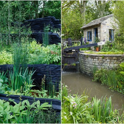 M&G Garden and Welcome to Yorkshire Garden at the Chelsea Flower Show 2019