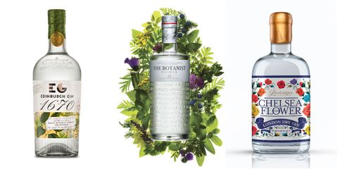 Liqueur, Drink, Product, Alcoholic beverage, Distilled beverage, Bottle, Vodka, Plant, Fines herbes, Glass bottle,
