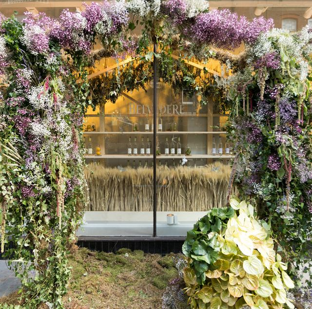 chelsea in bloom 2021 to celebrate the rhs chelsea flower show