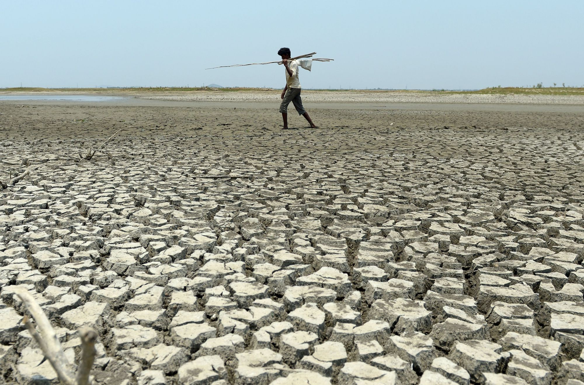 No System of Government Designed by Human Beings Can Survive What the Climate Crisis Will Bring