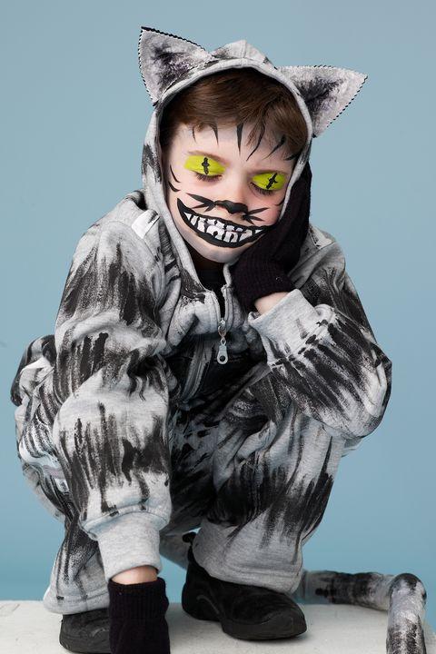 cheshire cat boy costume