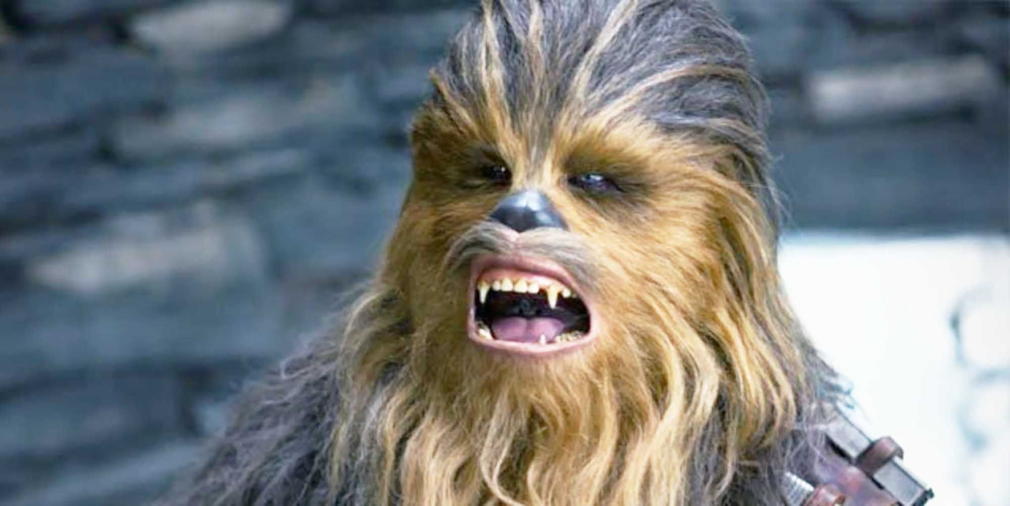 Star Wars New Series Will Introduce The First Ever Wookiee Jedi Gungi is a wookiee is a jedi master. introduce the first ever wookiee jedi