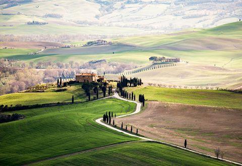 Green, Grassland, Natural landscape, Land lot, Field, Hill, Grass, Natural environment, Rural area, Plain,