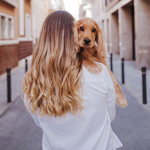 chica con perro en brazos