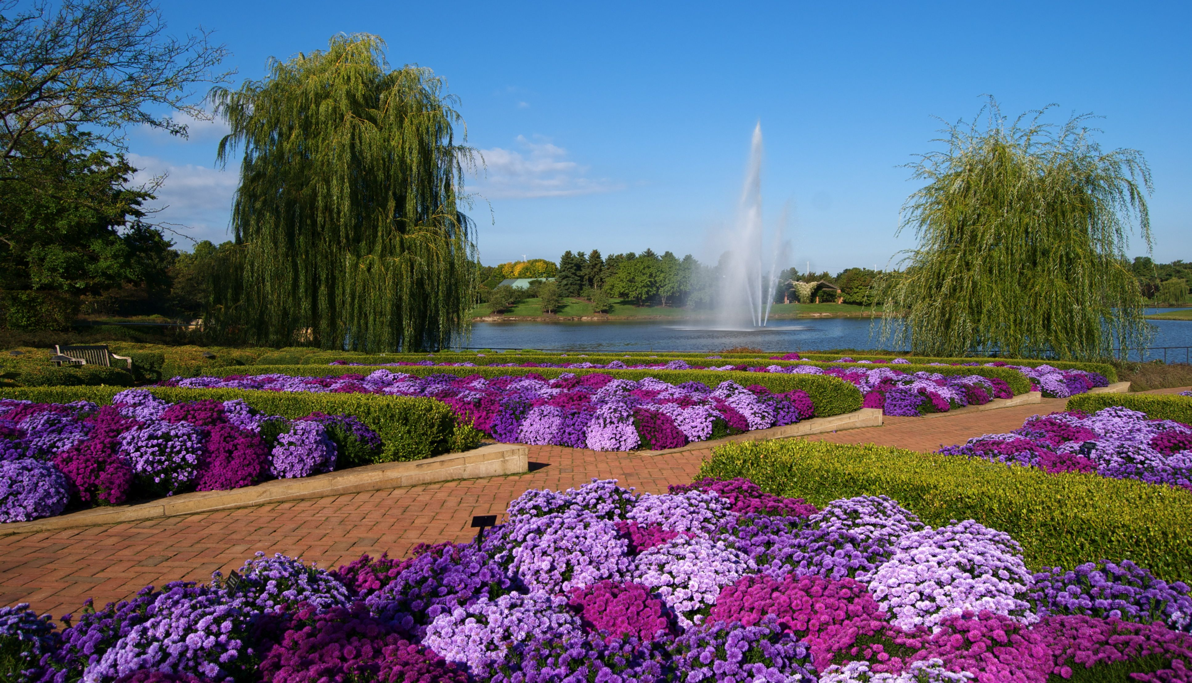 8 Beautiful Virtual Garden Tours To Enjoy While In Isolation