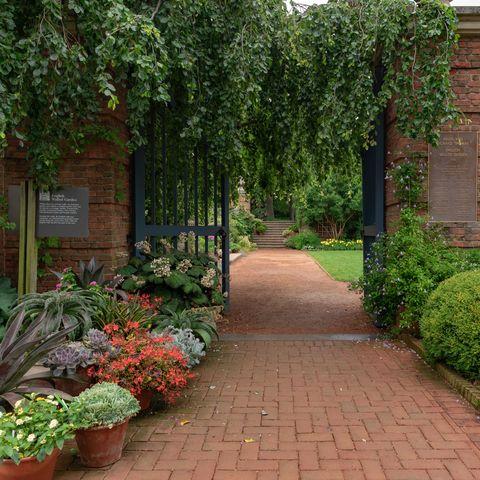 chicago botanical garden