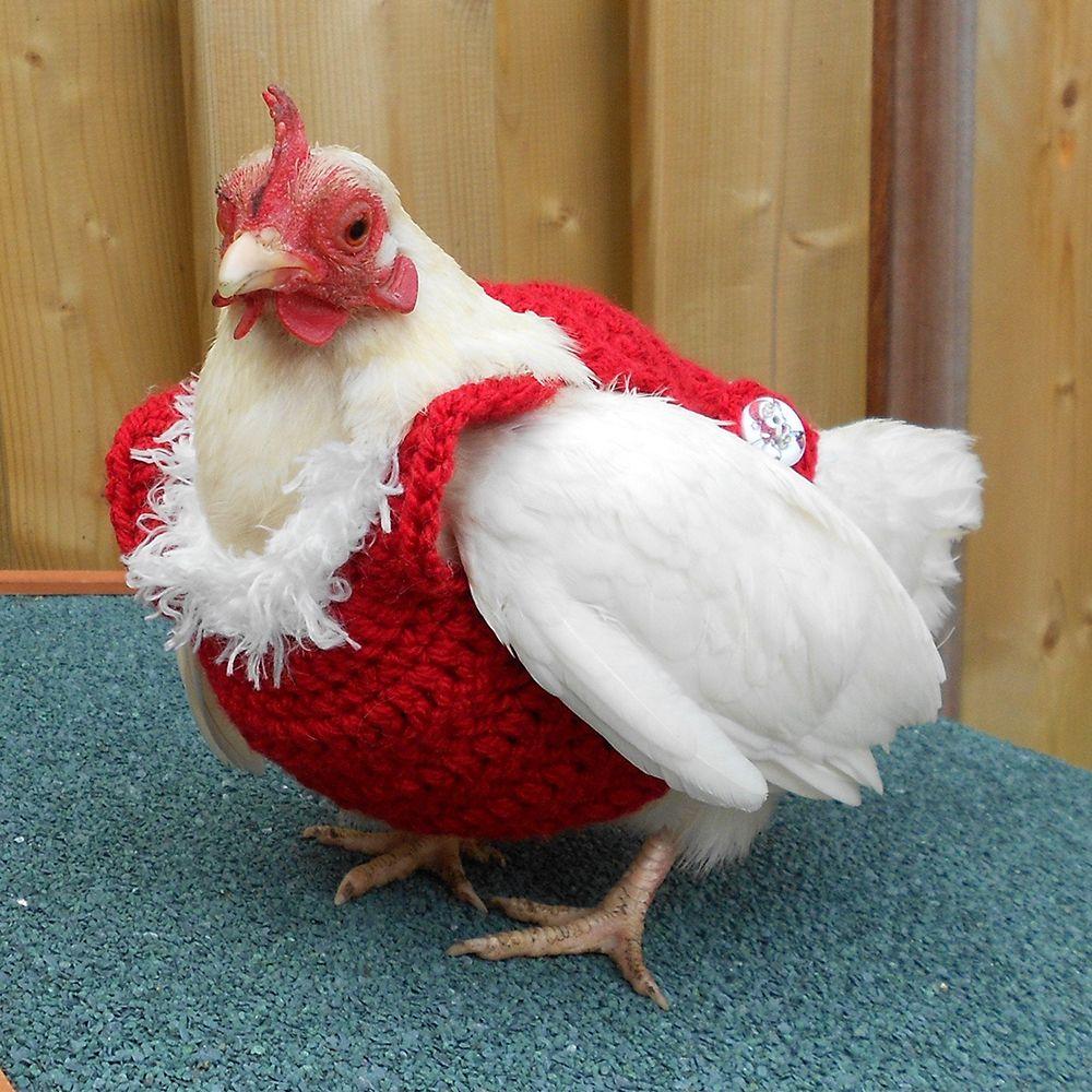 2 Festive Chicken Christmas Ornaments New