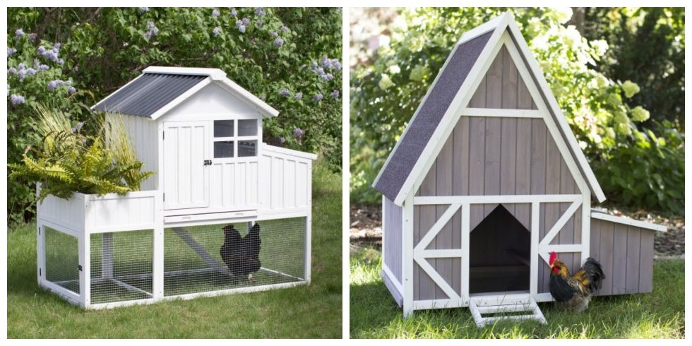 16 Stylish Backyard Chicken Coops You Can Buy