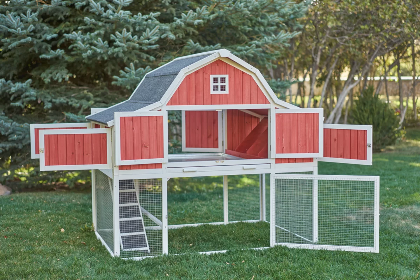chicken coops barn