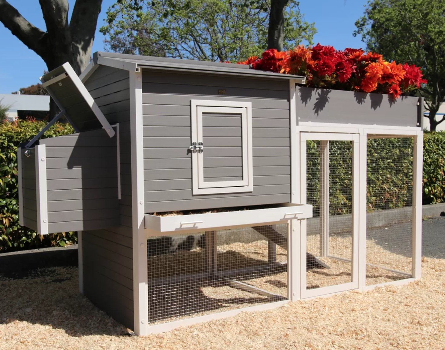 Chicken Coops Garden