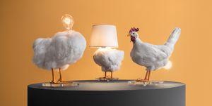 Bird Lamp, Sebastian Errazuriz