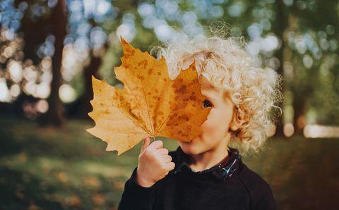 child holding a huge leaf