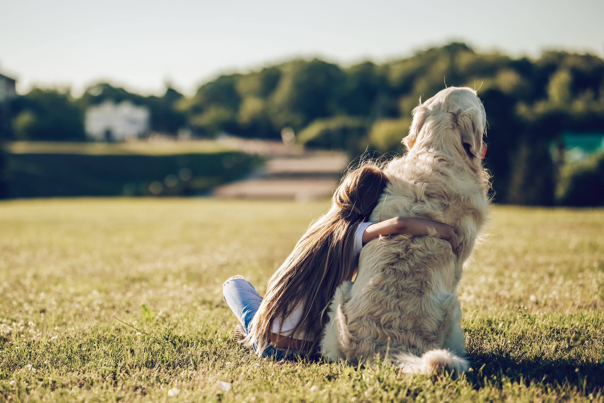 Being a dog person could be in your DNA, new study reveals