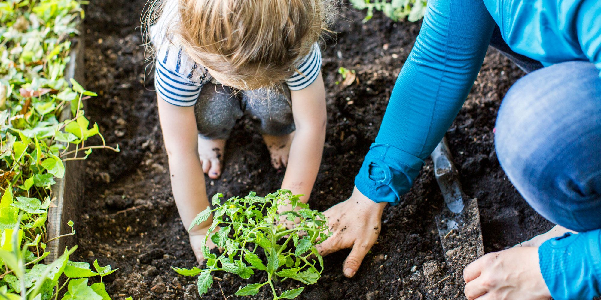 How To Get Children Into Gardening And The Best Gardening Tools ...