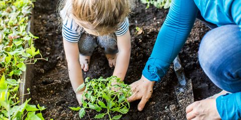 Image result for gardening kids