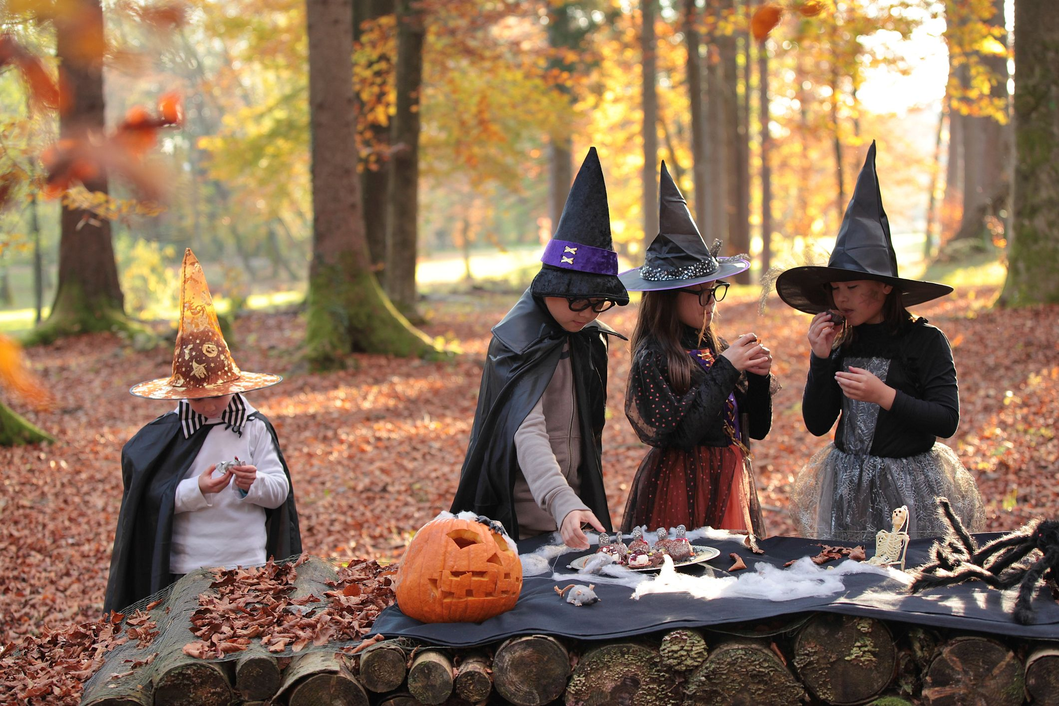 15 DIY Witch Costume Ideas , Witch Halloween Costumes You